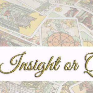 1-Card-Insight